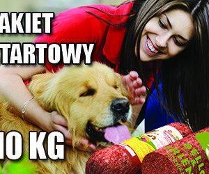 Karma Barf dla psa