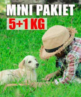 Mięso dla psów Pakiet Mini
