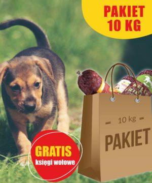 Mięso dla psów