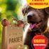 Barf dla psów
